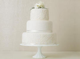 Cake Decorating Classes Chattanooga Tn : Quality Wedding Cakes Chattanooga TN Cake Supplies 423 ...