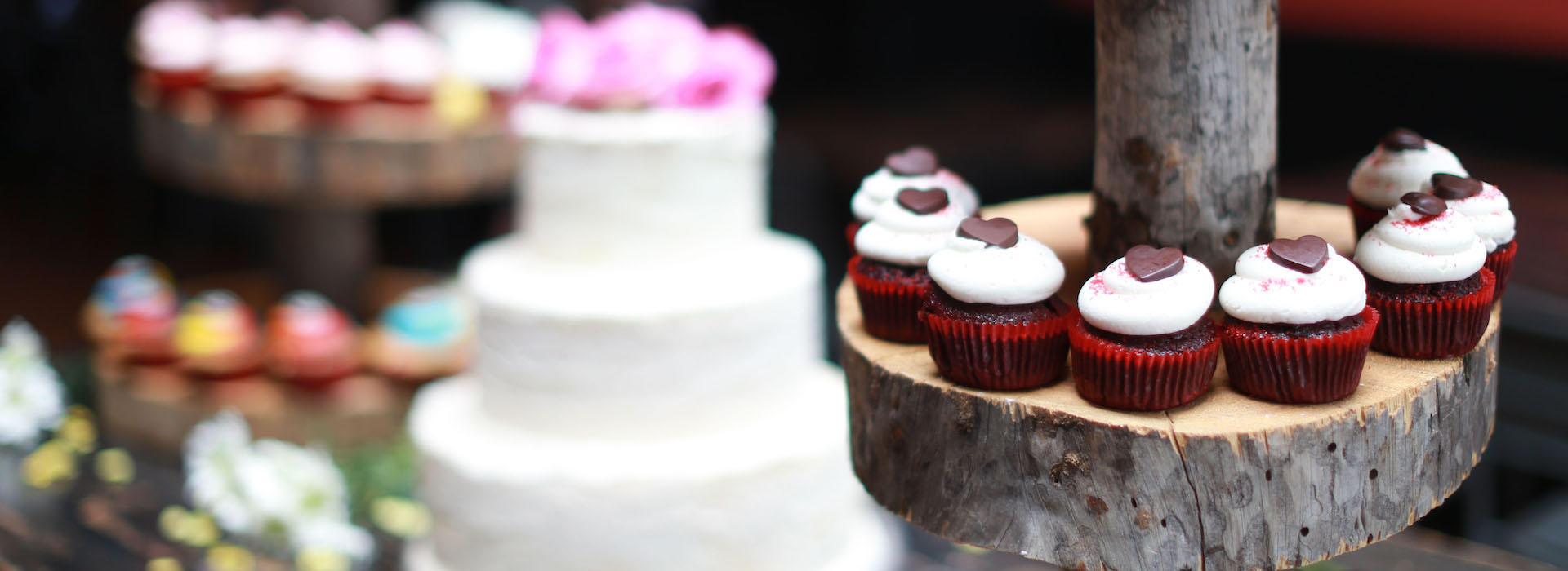 cupcakes and cakes chattanooga tn